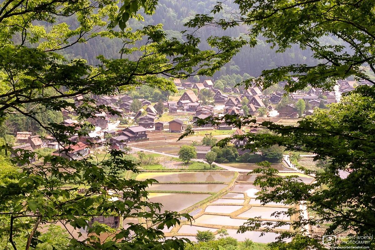 Ogimachi Village, Shirakawago, Gifu, Japan Photo