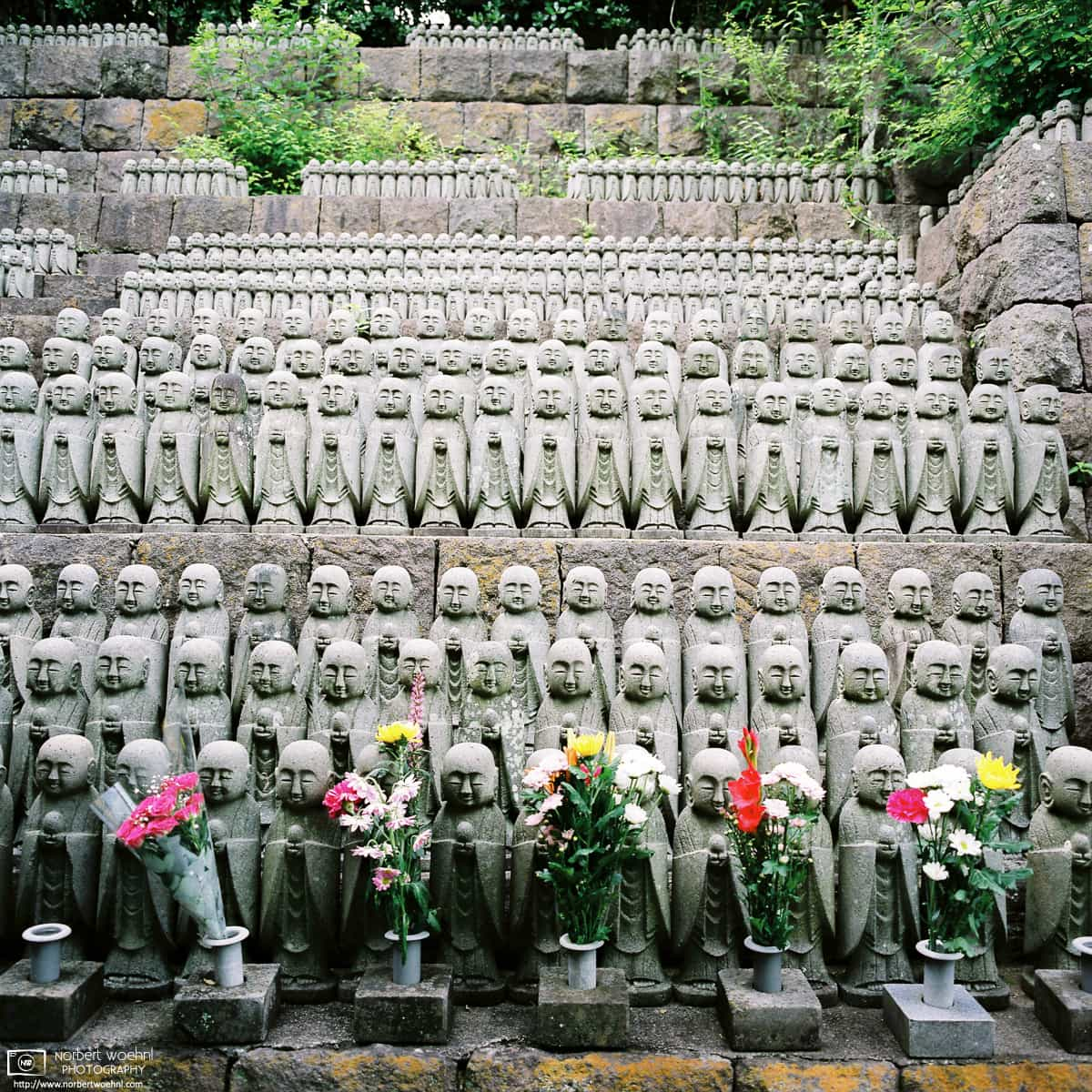 Jizo Statues, Hasedera Temple, Kamakura, Japan Photo