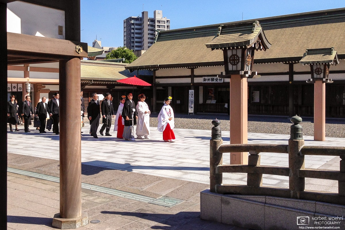 During a visit to Terukuni Jinja (照国神社) in Kagoshima on the south western tip of the island of Kyushu in Japan, I was lucky to be able to see a wedding procession enter the shrine premises, and make their way towards the main hall.