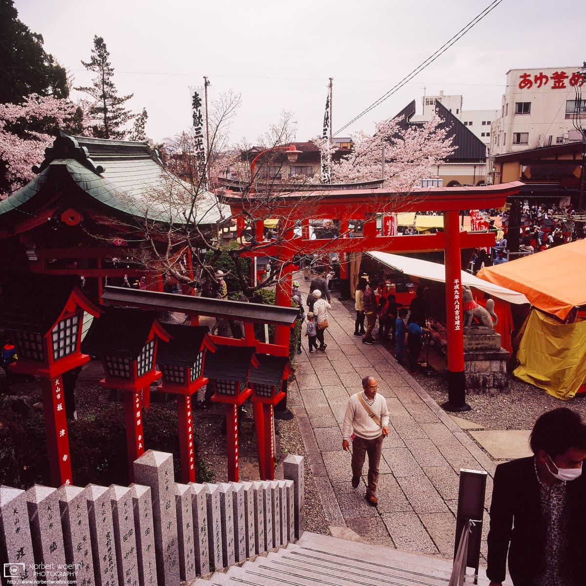 Cherry Blossom Festival Day, Sanko Inari Shrine, Inuyama, Japan Photo