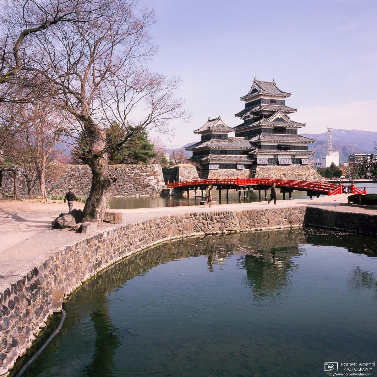 Castle in the City, Matsumoto, Japan Photo