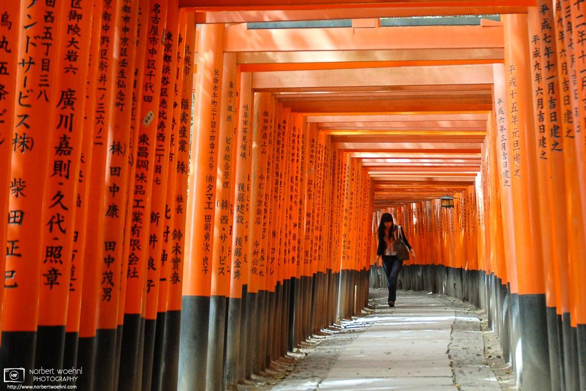 Encounter, Fushimi Inari Taisha, Kyoto, Japan Photo