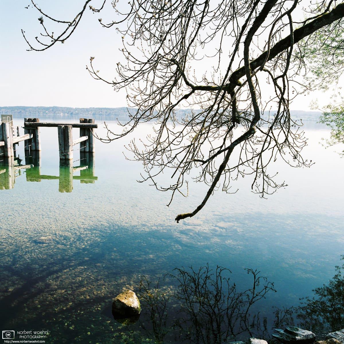 By the Lakeside II, Bernried, Starnberger See, Bayern, Germany Photo