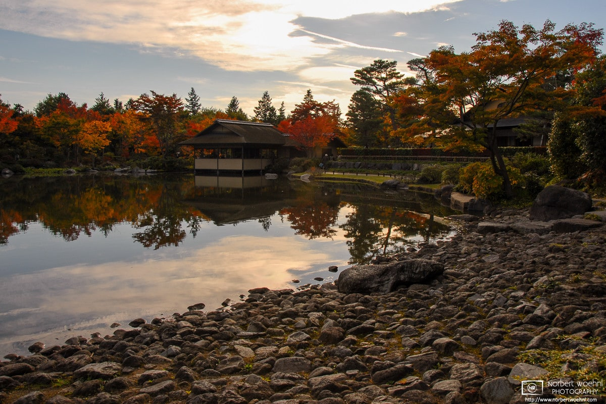 A quiet autumn afternoon scene along a pond at Showa Memorial Park (昭和記念公園) in Tachikawa, Japan.